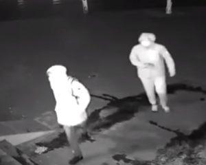 Video: Ladrón noquea a su compañero con un ladrillo sin querer